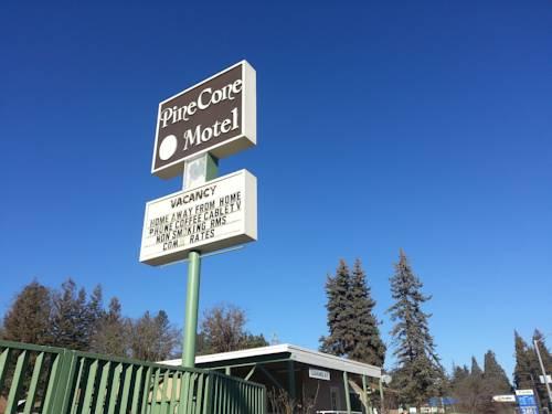 hotel Pine Cone Motel