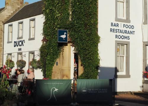 hotel Duck's Inn