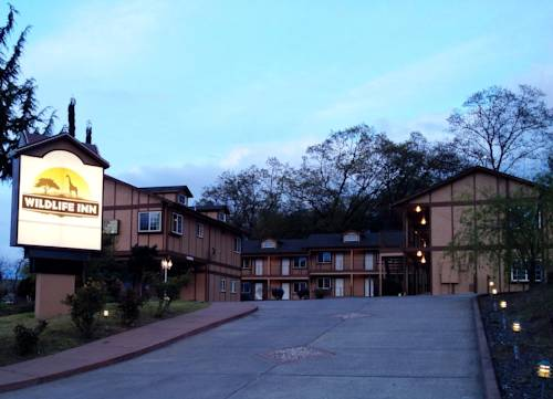 hotel Wildlife Inn