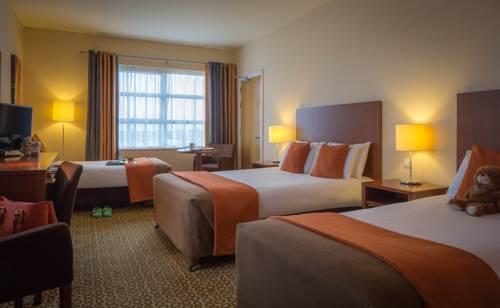 hotel Maldron Hotel & Leisure Centre Limerick