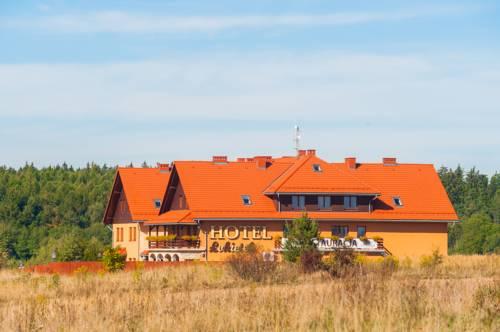 hotel Hotel Łokietek