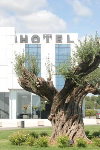 hotel Hotel Duomo
