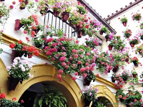 hotel Casa en Marbella