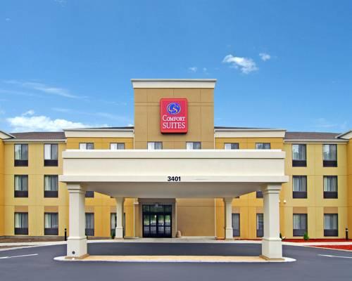 hotel Comfort Suites Vestal