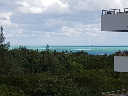 hotel Key Biscayne Apartment