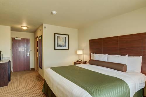 hotel Cobblestone Inn & Suites - Altamont