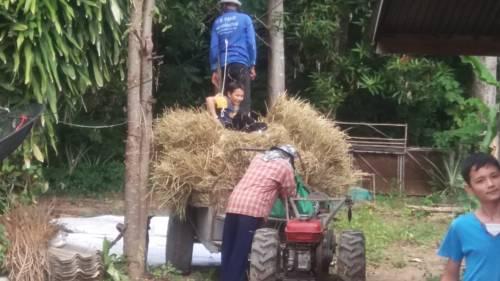 hotel Nong Prue Homestay