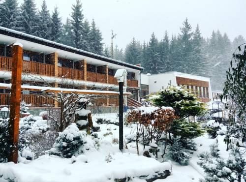 hotel Lesní pension