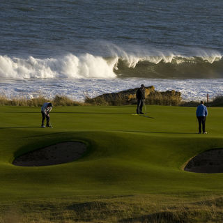 Royal dornoch golf club cover picture