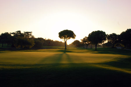 Overview of golf course named Tat International Golf Club