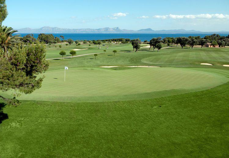 Club de golf alcanada cover picture