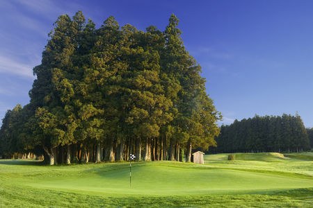 Furnas Golf Course Cover Picture