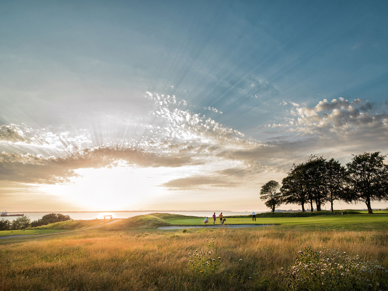 Rya golfklubb cover picture