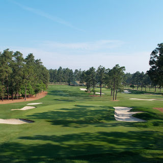 Pinehurst resort cover picture