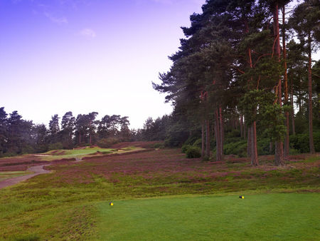 Overview of golf course named Swinley Forest Golf Club