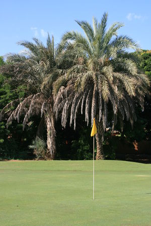 Overview of golf course named Golf de Saly