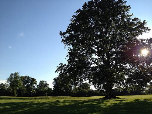 Stoke rochford golf club cover picture