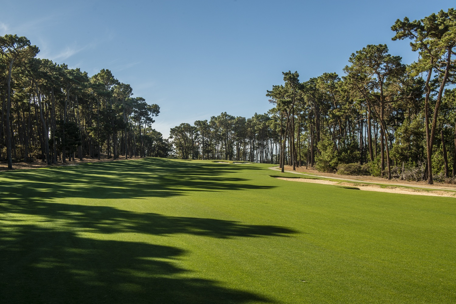 Overview of golf course named Poppy Hills Golf Course
