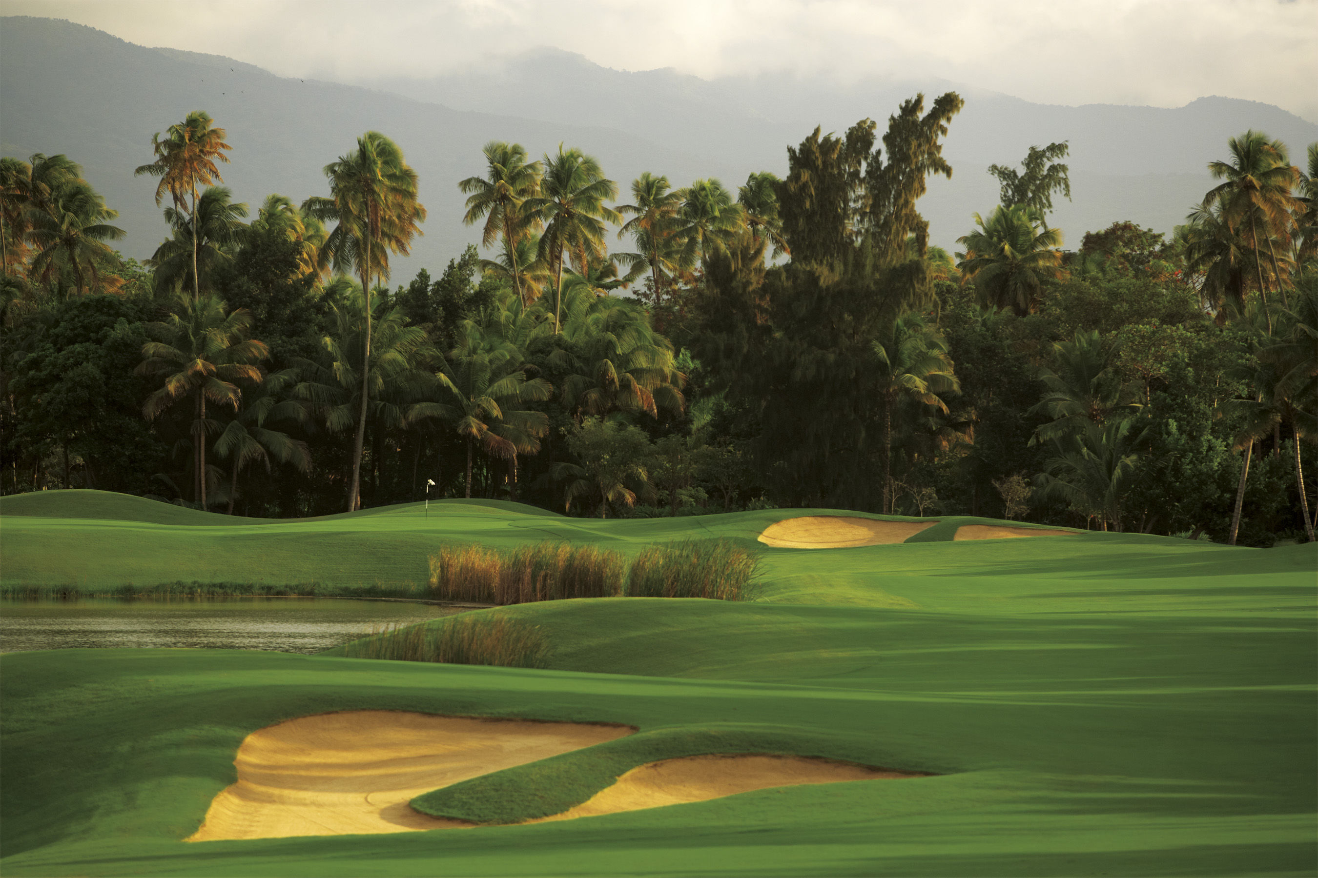 Bahia beach resort and golf club cover picture