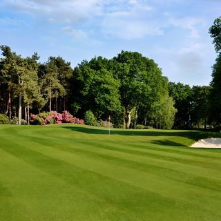 Wisley golf club cover picture
