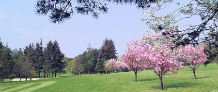 Ballochmyle golf club cover picture