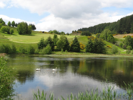 Strathpeffer spa golf club cover picture