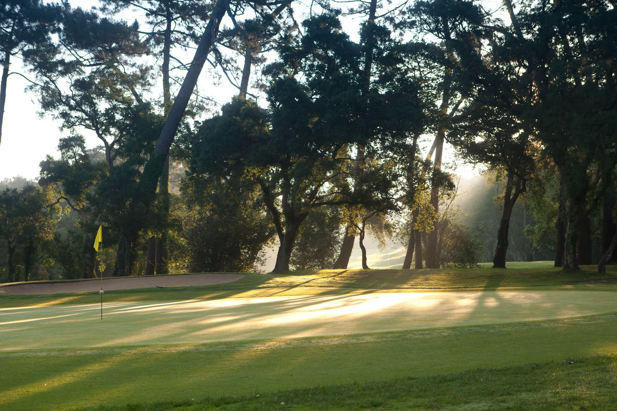 Overview of golf course named Golf Club d'Hossegor
