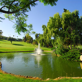 Aloha golf club cover picture
