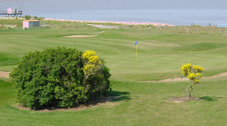 Golf La Pree La Rochelle Cover Picture