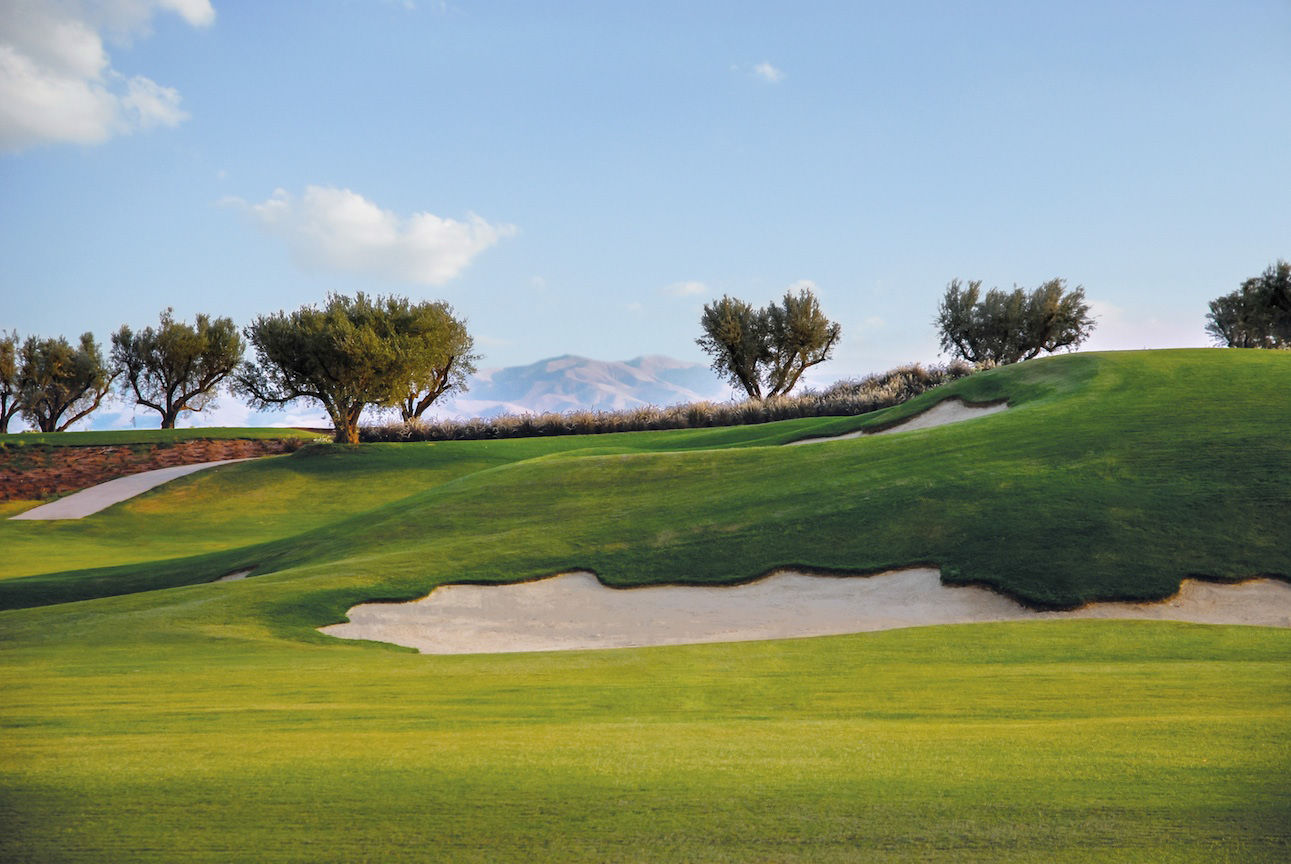 Royal palm golf club cover picture