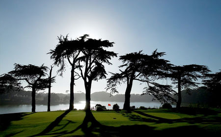 Overview of golf course named Tpc Harding Park