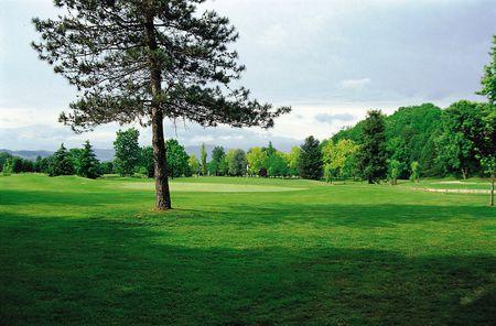 Matilde Di Canossa Golf Club Cover Picture