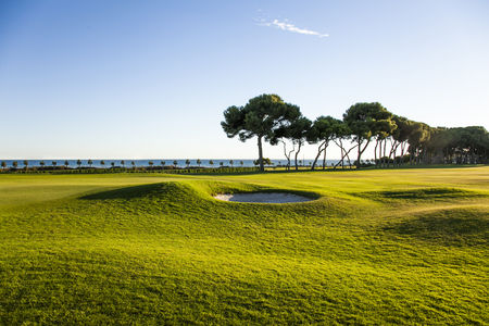 Club de golf terramar cover picture