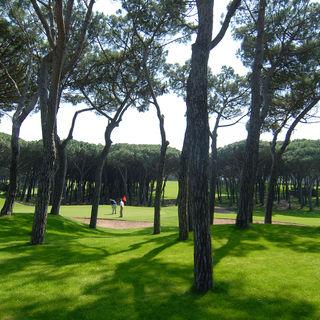 Golf platja de pals cover picture