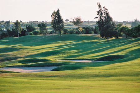 Overview of golf course named Golf Citrus