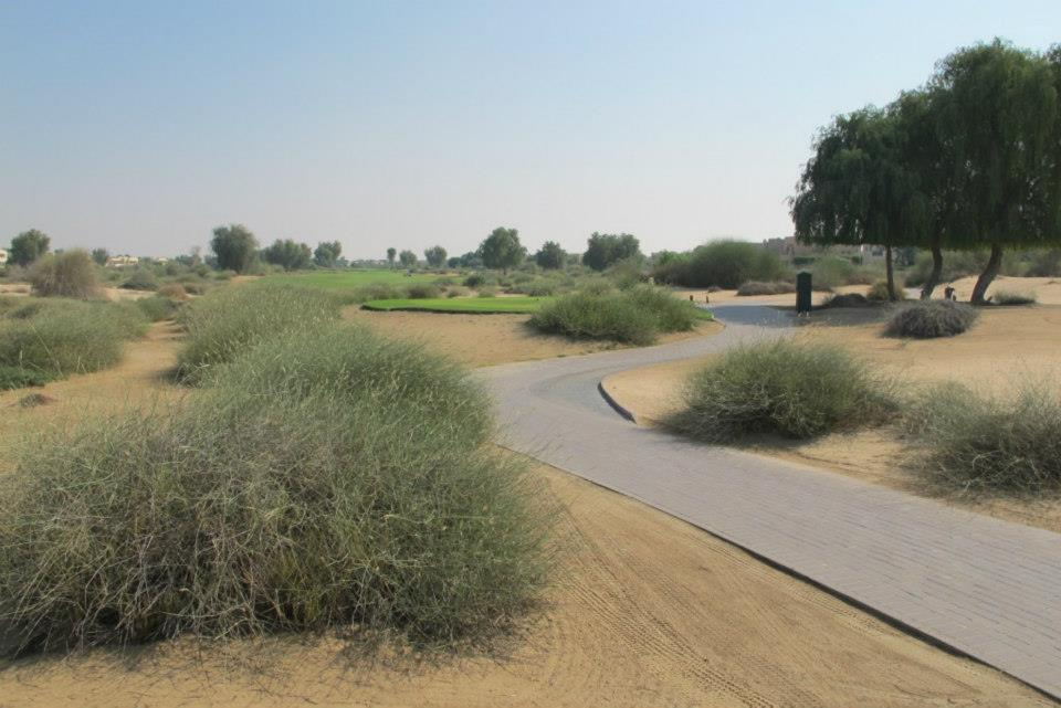 Overview of golf course named Arabian Ranches Golf Club