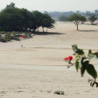 Al ghazal golf club cover picture