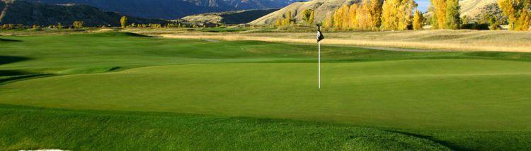 Air sofia golf club cover picture