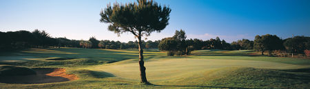 Overview of golf course named Quinta Da Marinha Golf