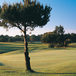 Club de golf quinta da marinha cover picture