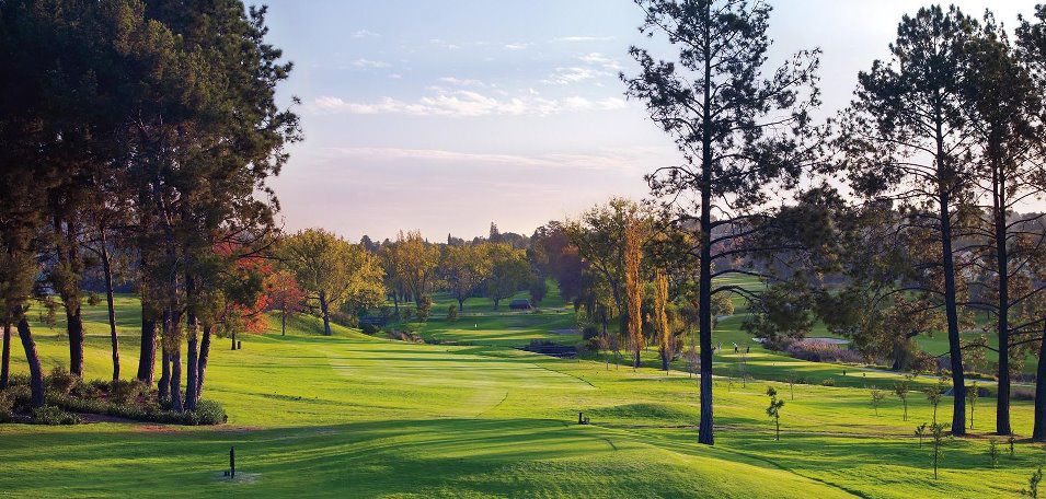 Royal johannesburg and kensington golf club cover picture