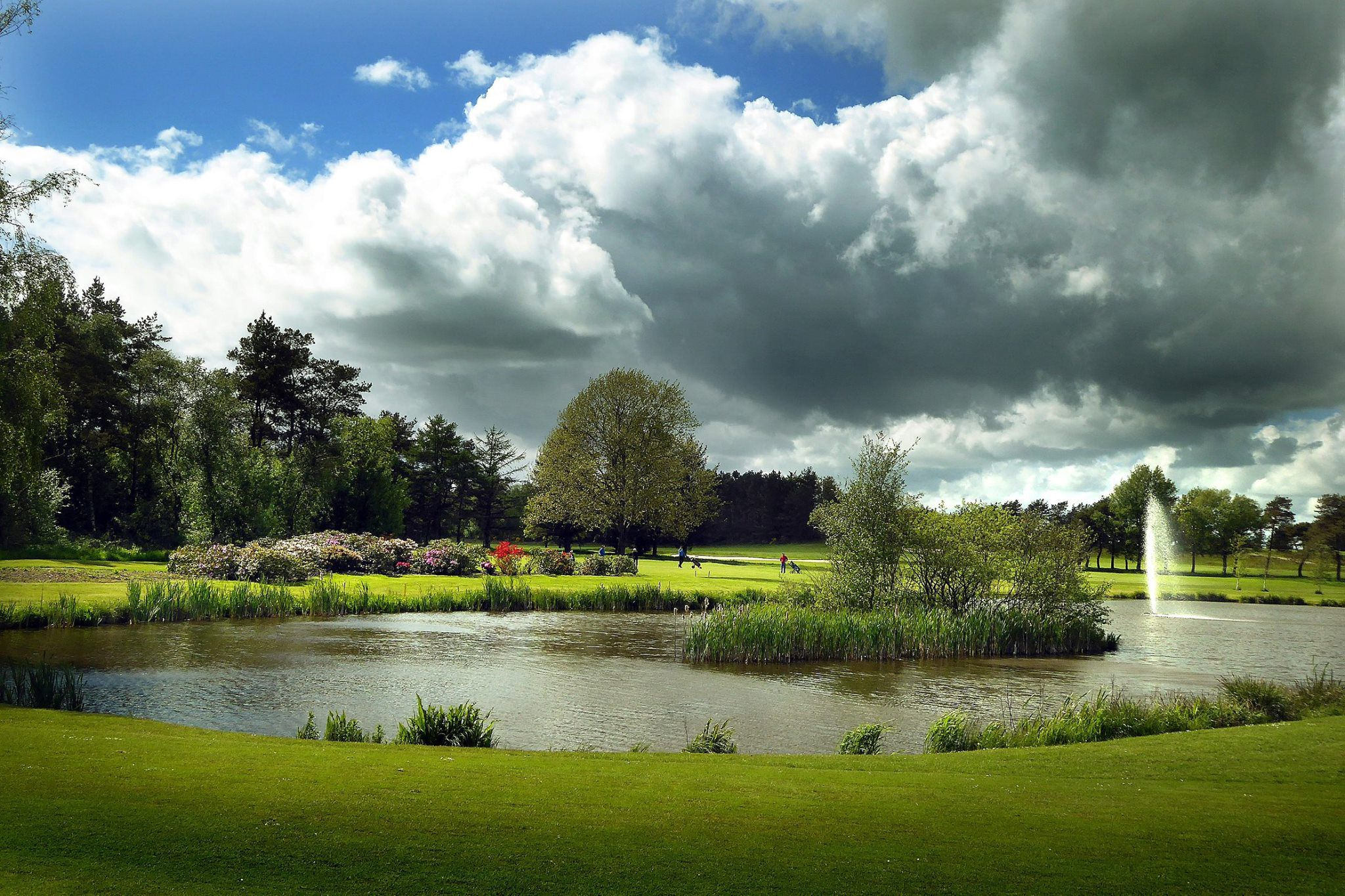 Aalborg golf club cover picture