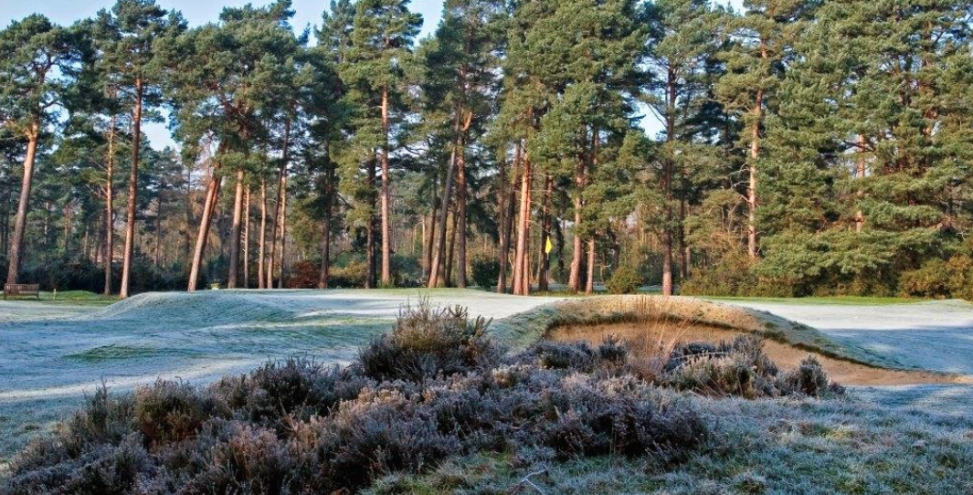 Overview of golf course named Worplesdon Golf Club