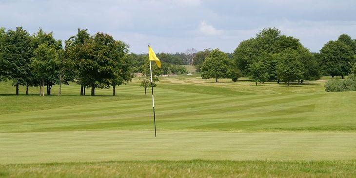Bokskogens golfklubb cover picture