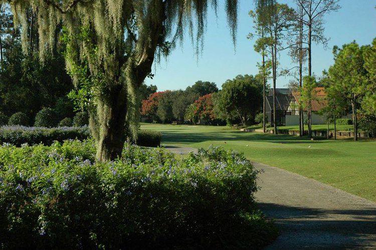 Orange tree golf club picture
