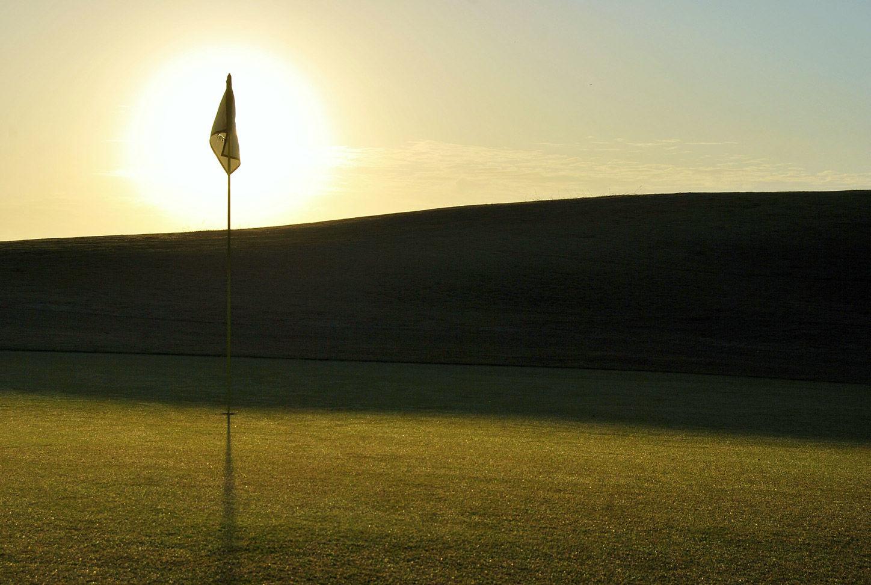 Black bear golf club picture