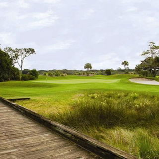Amelia island plantation picture