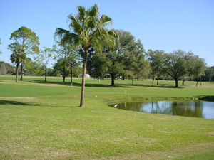 Overview of golf course named Mount Dora Golf Club