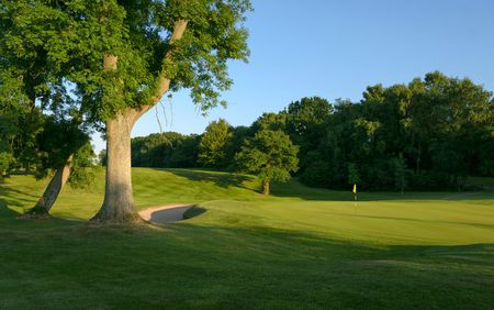 Newport Golf Club Cover Picture