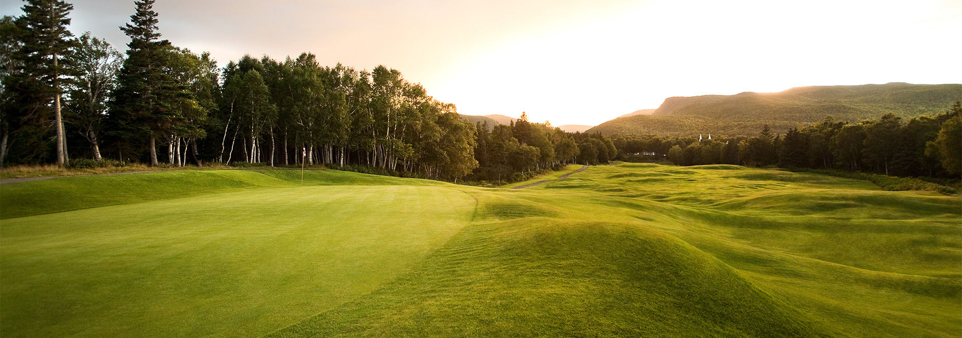 Highlands links golf club cover picture